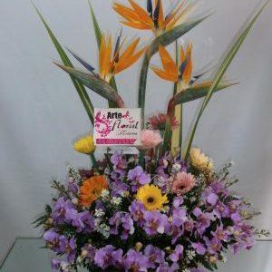 Arreglo con aves del paraíso, orquídeas y gerveras