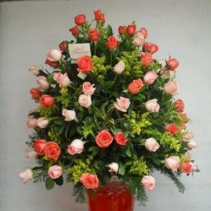 Samaritano rosas rosadas y salmon